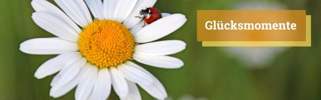 Glücksmomente - Lebensfreude-Blog - Lebensfreude-Academy